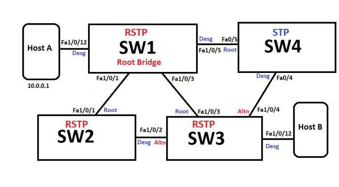 RSTP_Base_Top3