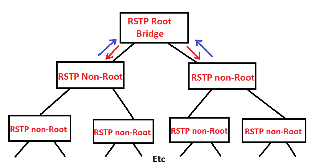 Rstp Network Synchronization Intro How I Memorize It Debugged