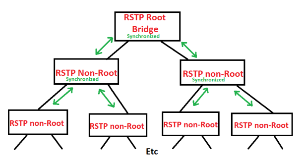 RSTP_Synch_Tree_4