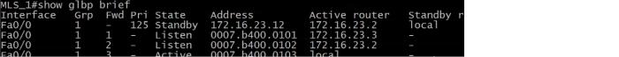 GLBP_Standby_Output