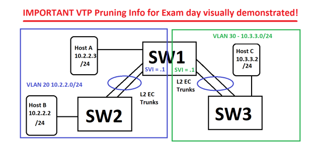 VPT_Pruning Demo