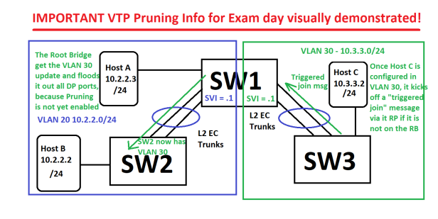 VPT_Pruning Demo_2