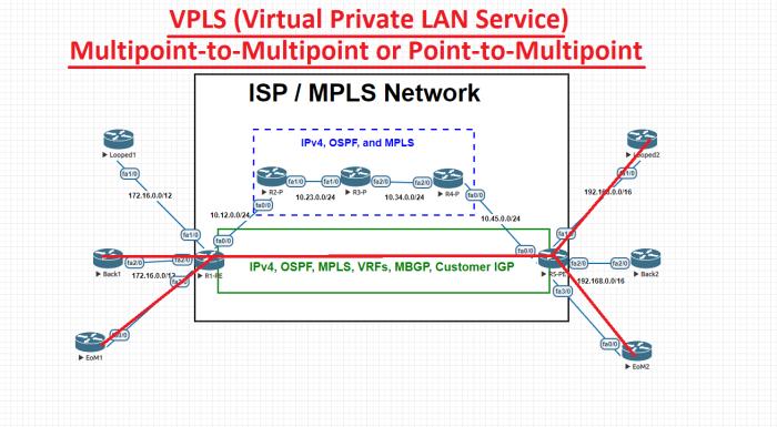 MPLS_VPLS