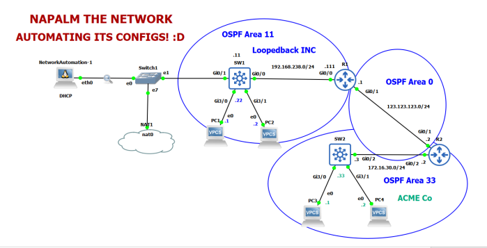 OSPFNapalmTop